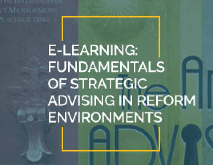 Fundamentals of Strategic Advising in Reform Environments